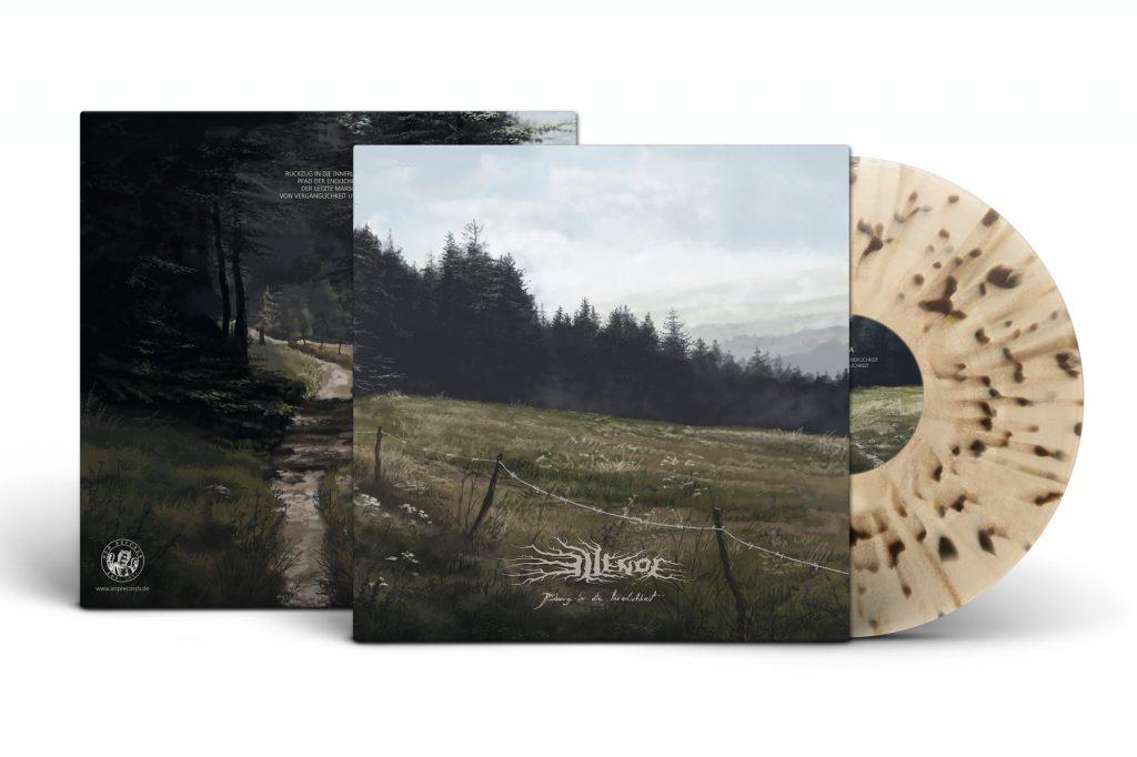 RIDI limited vinyl